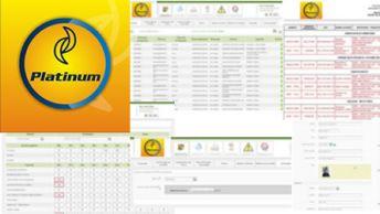Platinum - Sistema de agentes